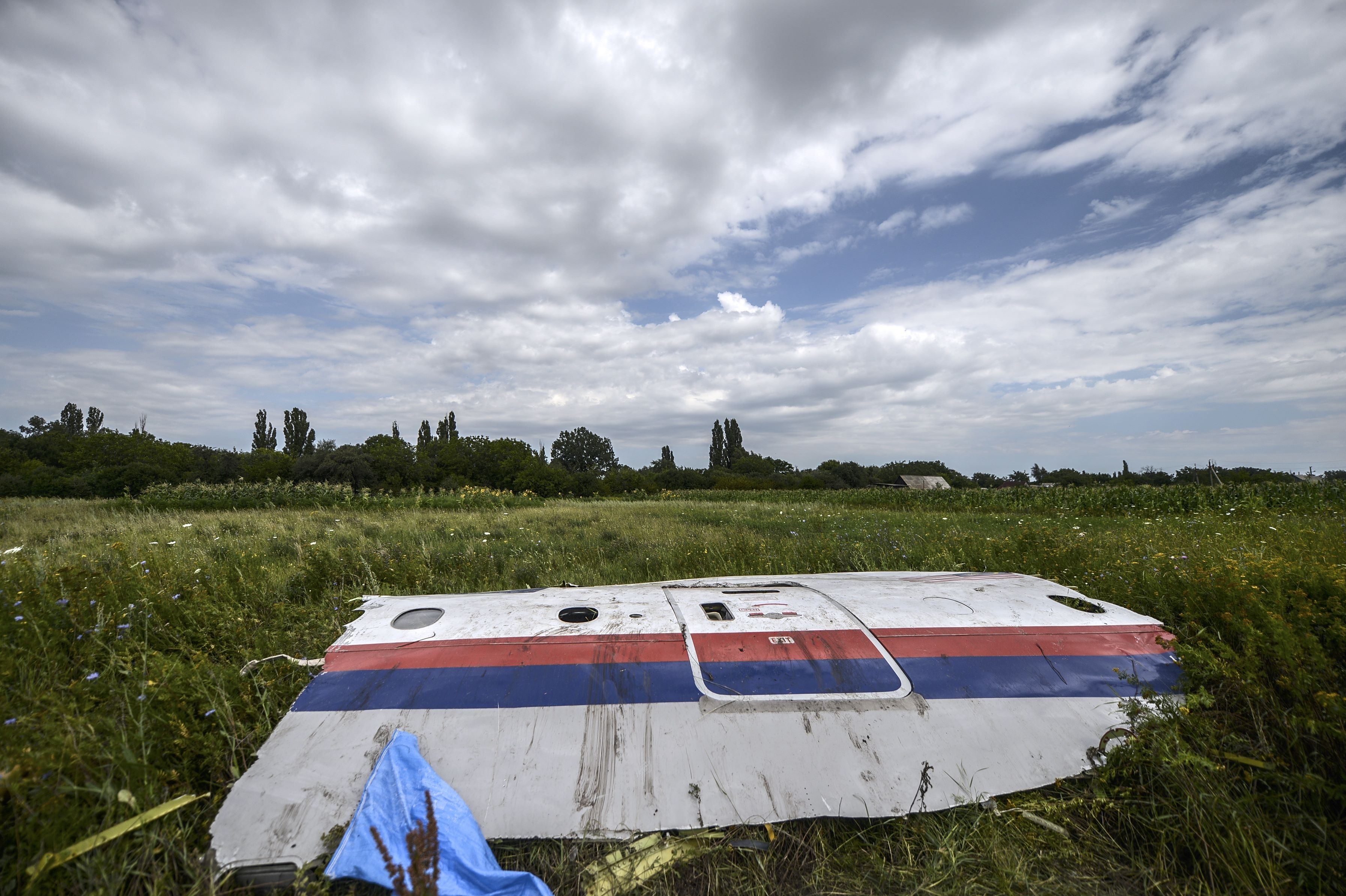 Pro-Russian Separatists Shot Down MH17: Could This Crime Against Humanity Have Been Prevented?