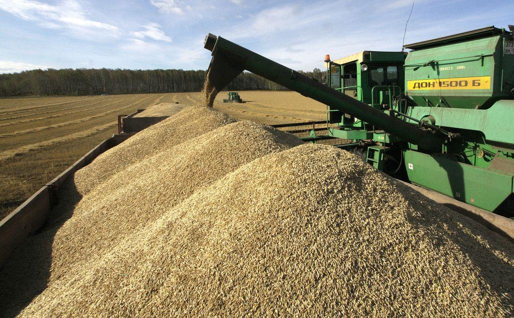 Is Ukrainian Agriculture Subsidized