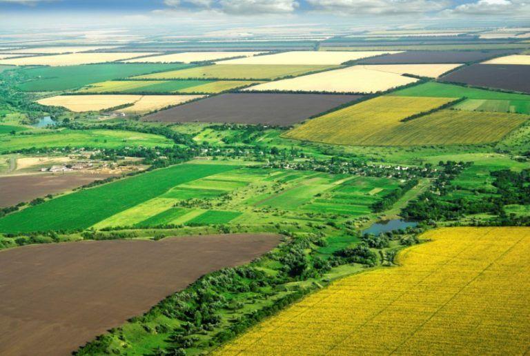 Землю в остров Сани для сельского хозяйства