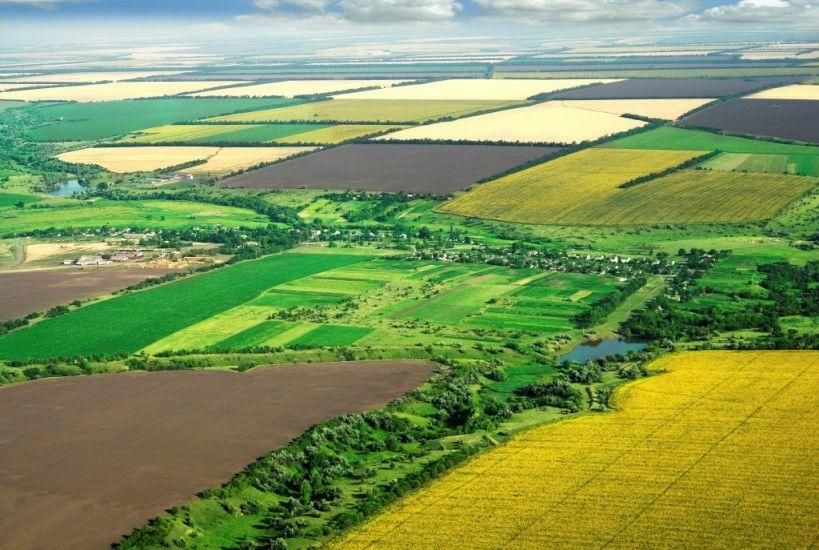 Защита Имущественных Прав на Землю и Изменения в Землепользовании