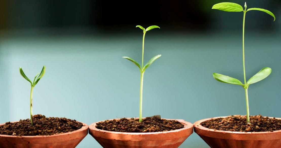 Снижение Регуляторной Нагрузки на Малые и Средние Предприятия: Европейский Опыт