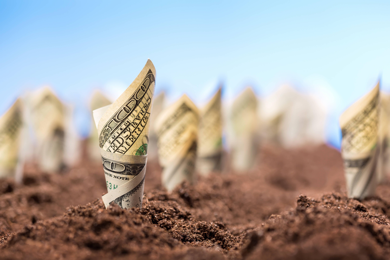 Вплив Податкових Пільг Сільськогосподарським Підприємствам на Продуктивність Сектора