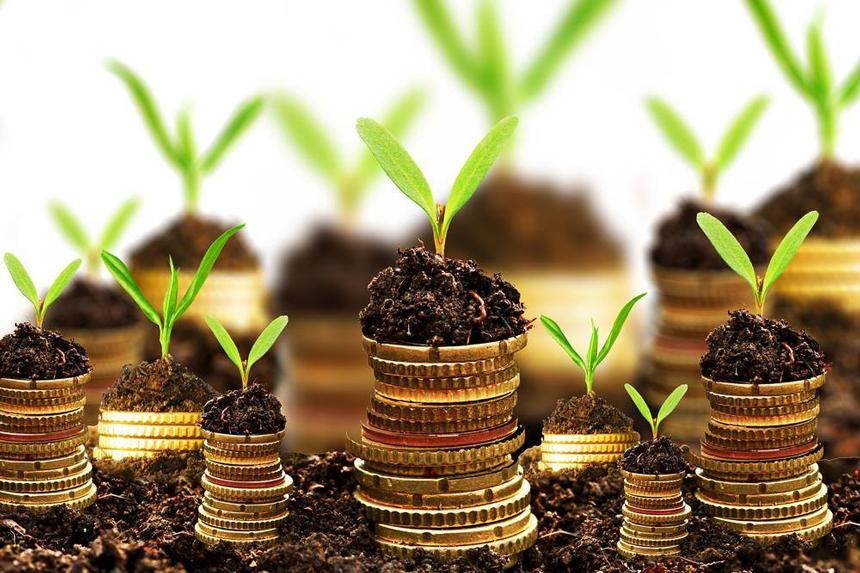 Економічна Віддача Землі Сільськогосподарського Призначення в Україні та її Розподіл
