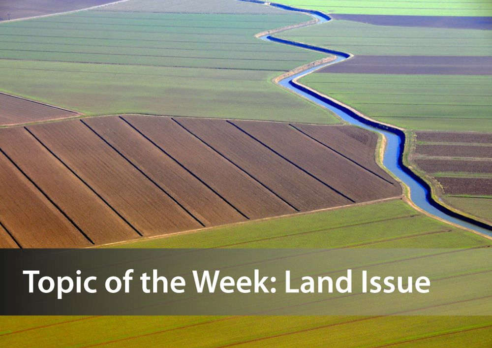 Electronic Land Sales: Conditions for Success