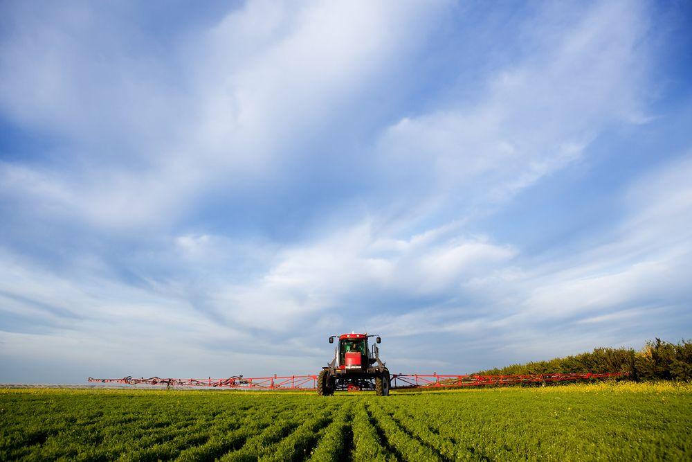Большая дискуссия на VoxUkraine: Мораторий на продажу земель сельхозназначения