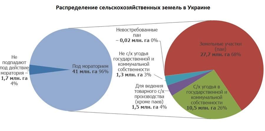 Денис Низалов: Земельная реформа невыгодна тем, кто работает по теневым схемам