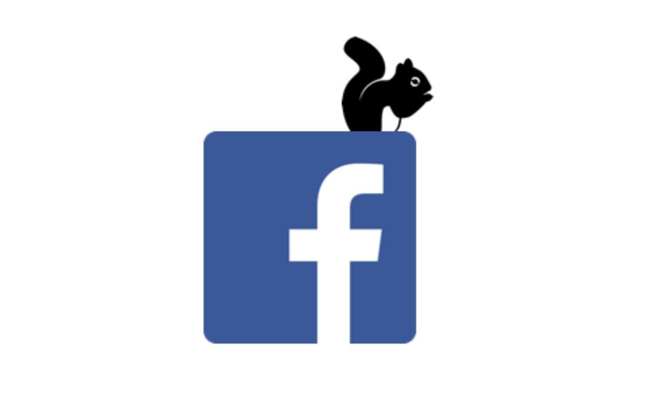 Білка-дайвер піде на все, або як написати популярний пост на фейсбуці та кому зі ЗМІ це вдається?