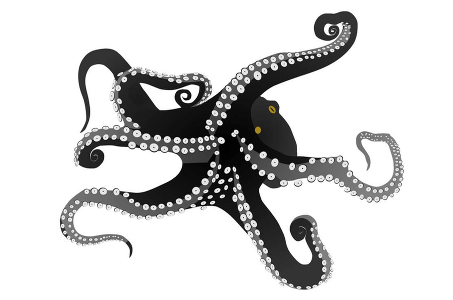 How to Reform the Ukrainian Octopus