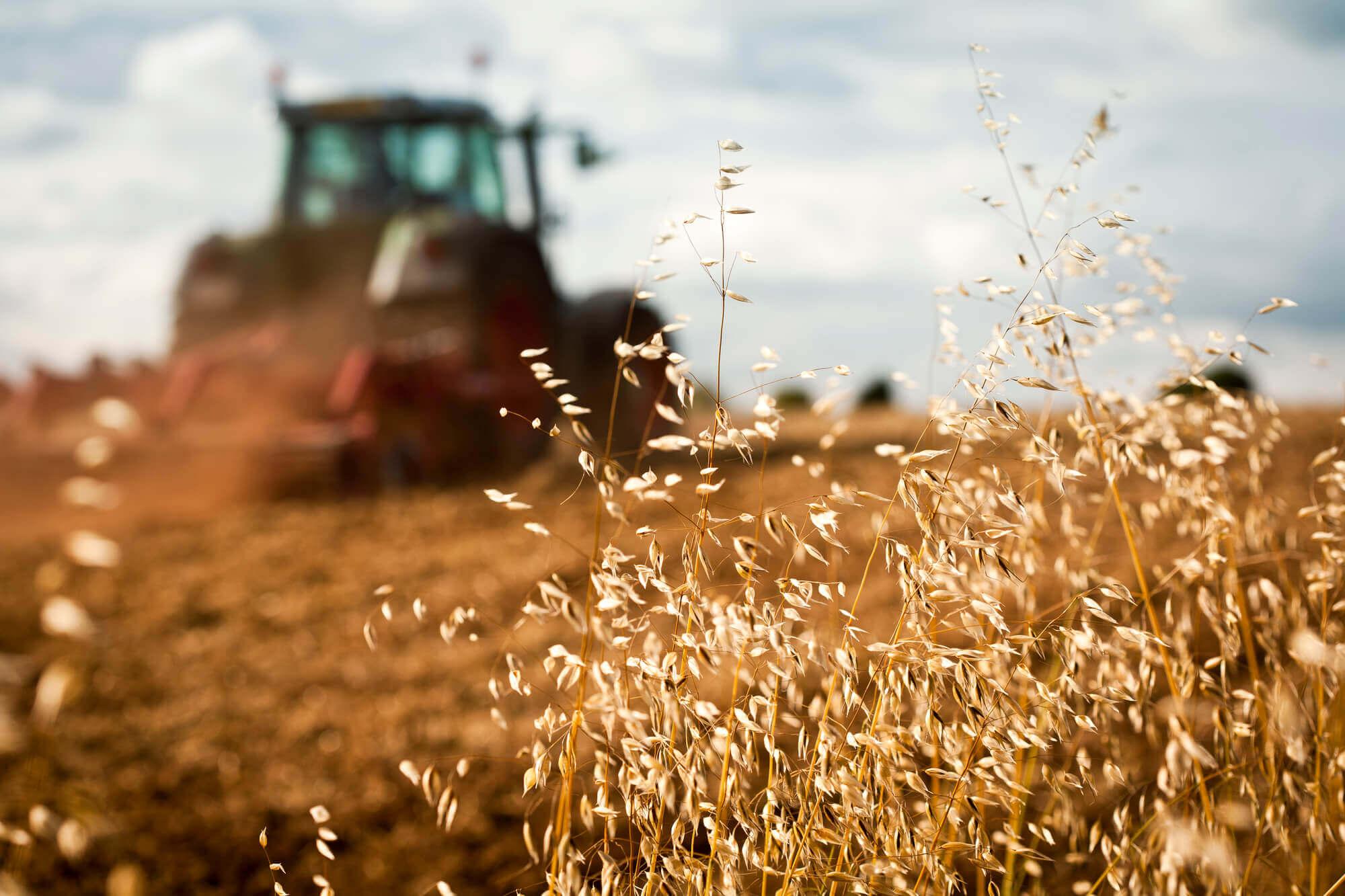 Раціоналізація державної підтримки аграрного сектору України