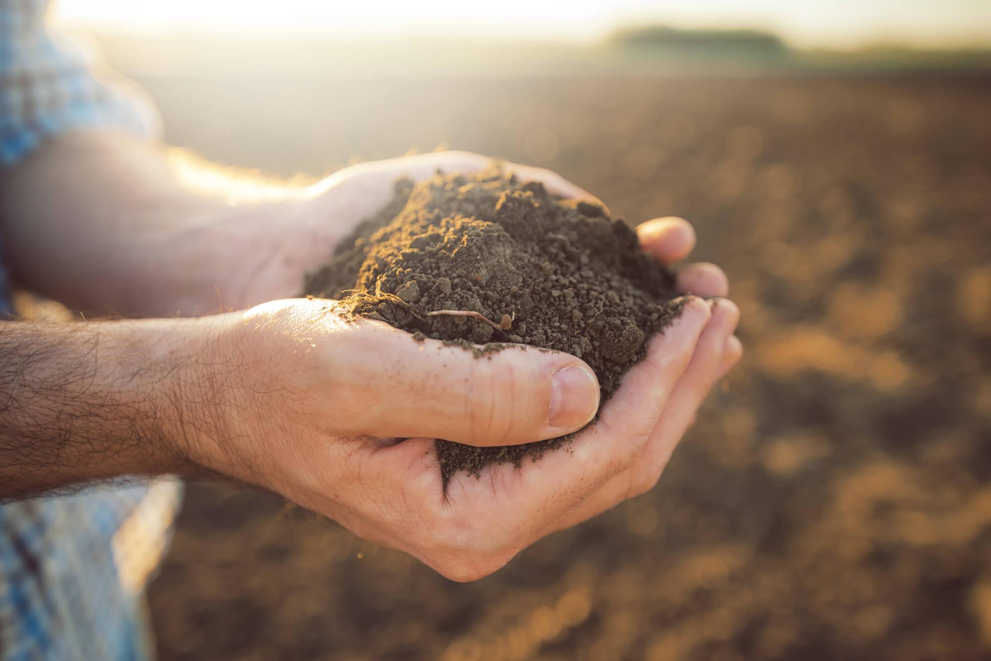Економічний та розподільчий вплив від скасування мораторію на купівлю-продаж земель