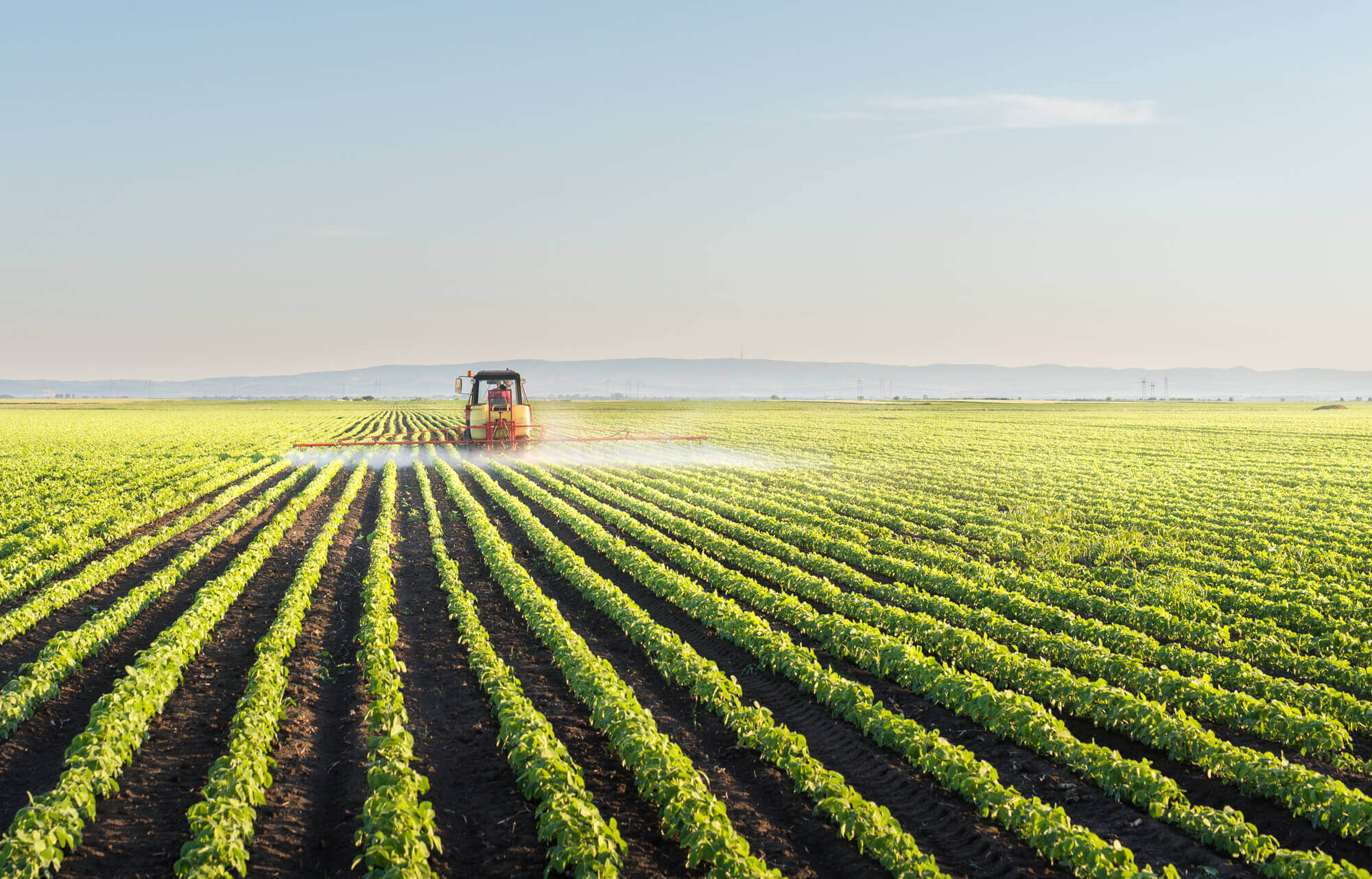 """""""They will split Ukraine between oligarchs and agroholdings!"""" and other manipulations"""