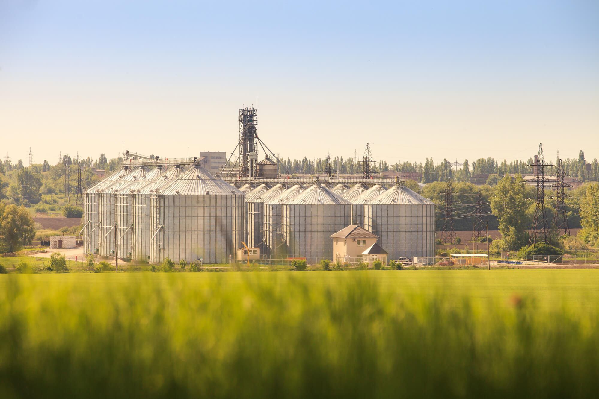 Agroholdings and Agricultural Science in Ukraine: Uneasy Bedfellows