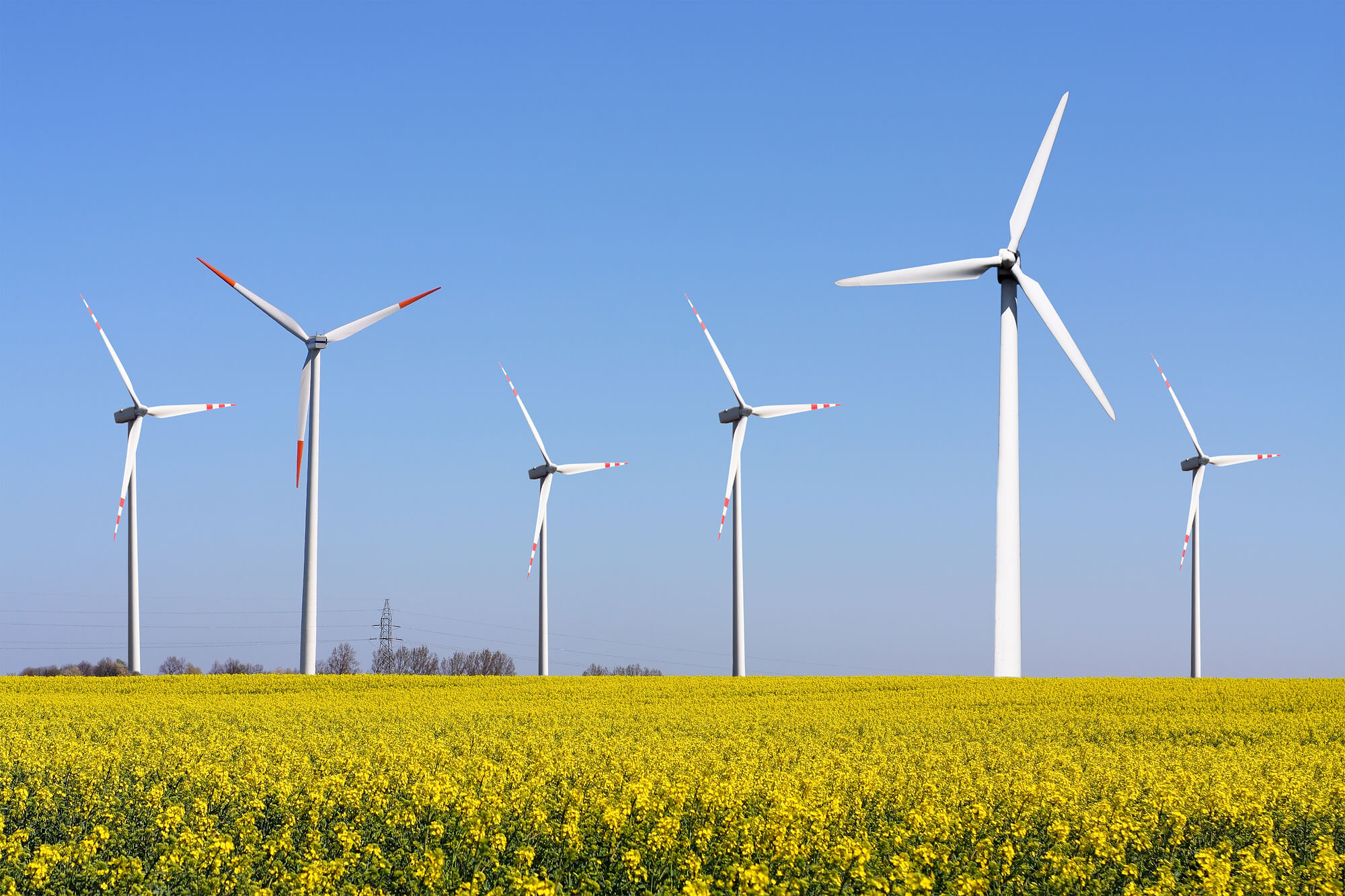 Green Deal In The EU And Ukraine: What Challenges Arise